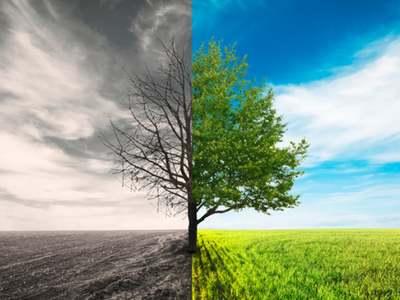 Decrying decarbonization?