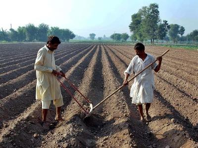 Farmers' associations term budget 'unsatisfactory'