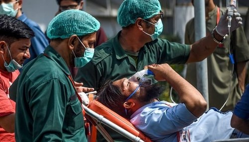 Pakistan reports 56 deaths, 1,239 new Covid cases in 24 hours