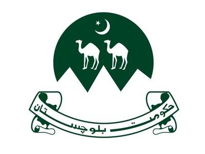 Balochistan govt launches PSDP Automation System