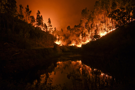 Cyprus seeks Israel, EU help to fight wildfire