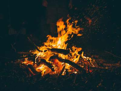 Firewood vs natural gas