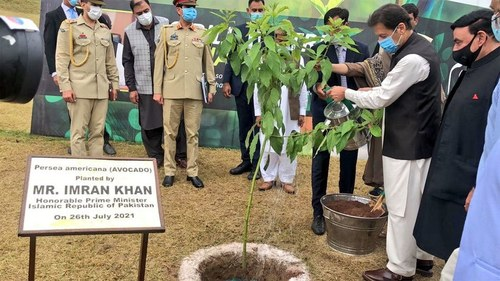 PM launches countrywide monsoon plantation drive