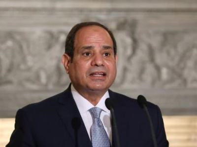 Sisi calls for first bread price rise in decades