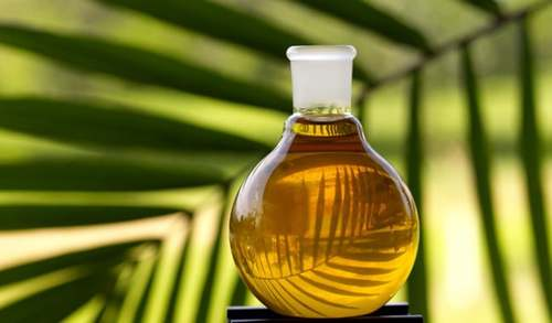Palm oil may fall to 4,105 ringgit