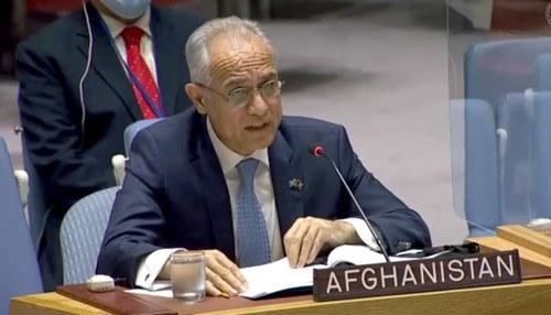 Afghanistan's UN ambassador calls on Pakistan for joint efforts against terrorism