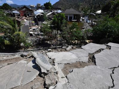Powerful Haiti quake kills at least 29