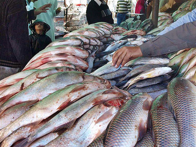 Seafood export declines by 55pc in July