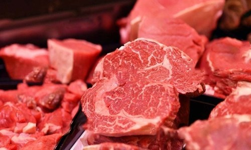 Beef giant Brazil halts China exports after confirming two mad cow disease cases