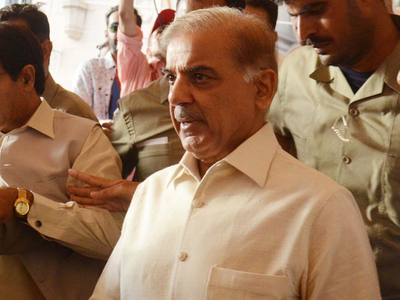 SBP, Nepra reports 'vindicate' PML-N stance: Shehbaz