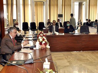 ECC approves tender to import of wheat