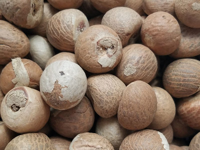 Betel nuts worth Rs69m seized