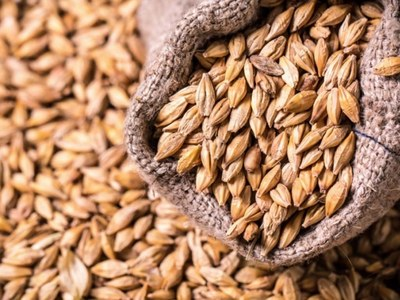 Two consignments of wheat, sugar arrive