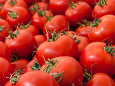 Govt mulling freezing export of tomato, onion