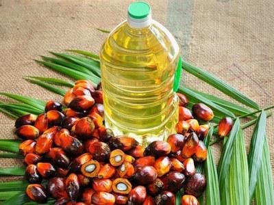 Palm oil falls on cheaper crude, US soyoil