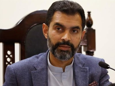Need to step beyond 'conventional roles' to counter crisis: Dr Reza Baqir