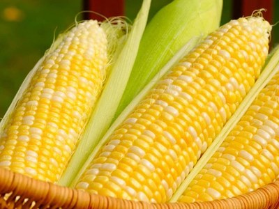 Corn near 5-week low on higher stocks view; soybeans firm