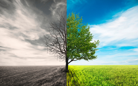 Climate change to cause wide-ranging impacts in country: experts