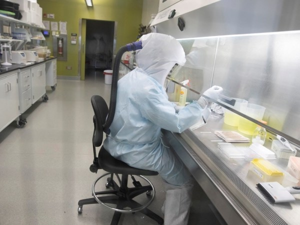 Scientists work in VIDO-InterVac's (Vaccine and Infectious Disease Organization-International Vaccine Centre) containment level 3 laboratory, where the organization is currently researching a vaccine for novel coronavirus, at the University of Saskatchewan in Saskatoon, Saskatchewan, Canada October 18, 2019. Picture taken October 18, 2019.  David Stobbe/VIDO-InterVac/University of Saskatchewan/Handout via REUTERS.  NO RESALES. NO ARCHIVES. THIS IMAGE HAS BEEN SUPPLIED BY A THIRD PARTY. ORG XMIT: TOR501