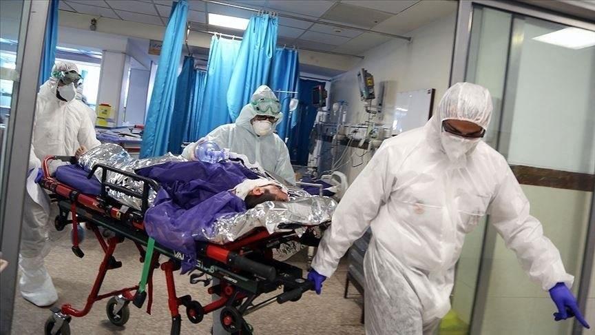 Brazil reports 55,649 new coronavirus cases, 1,194 additional deaths