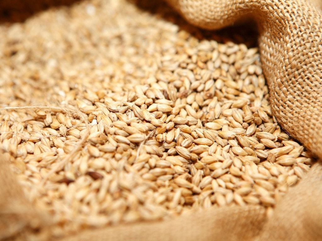 Steps taken to forestall sugar, wheat shortages
