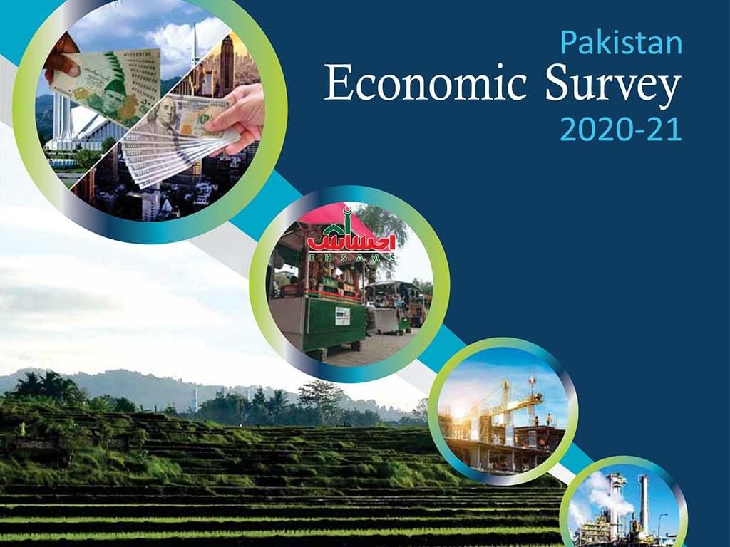 Economic Survey 2020-21: Overview of the economy