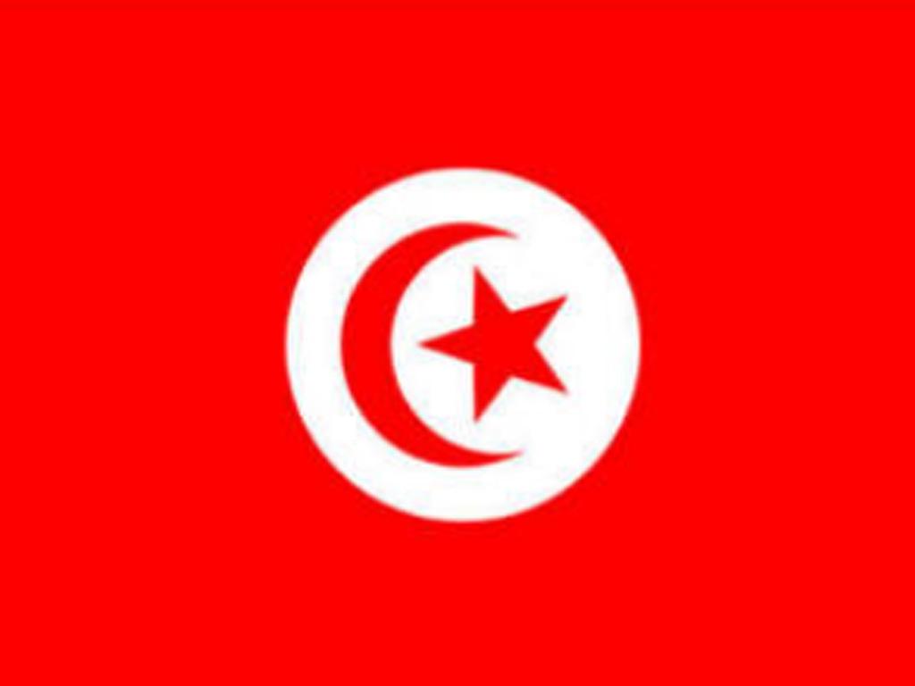 Tunisia president sacks defence minister amid political turmoil