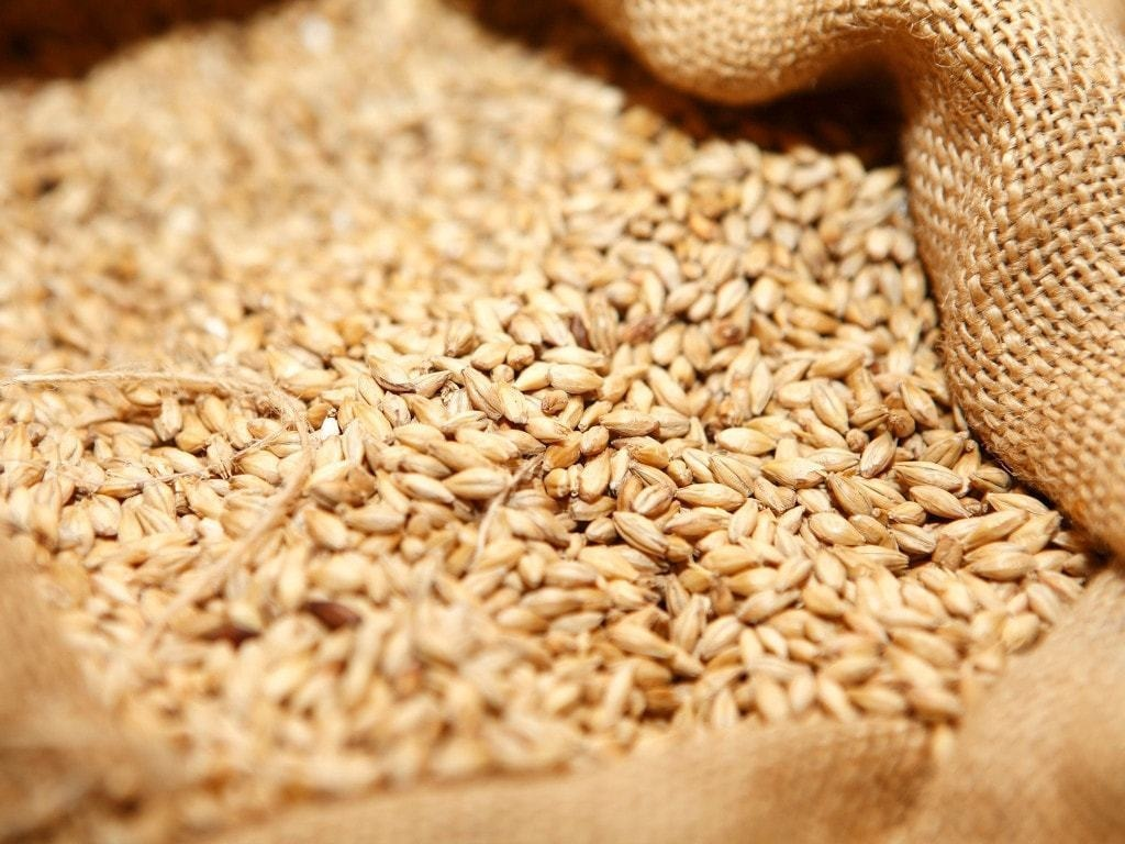 Trading Corporation Pakistan said to buy about 220,000 tonnes wheat in tender