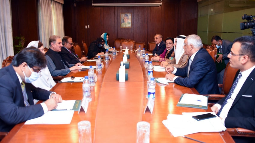 Dialogue only way to resolve conflicts, FM Qureshi tells Arab delegation