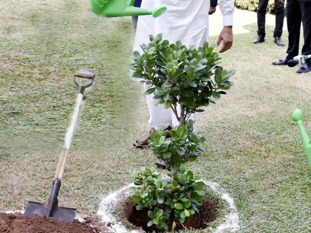 Zartaj, Buzdar discuss Clean & Green Pakistan project
