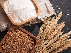 Wheat prices: temporary respite?