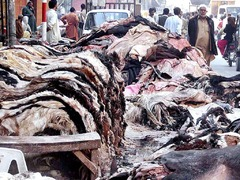 Record decline in raw hide price worries leather traders