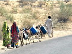 Save Sindh!