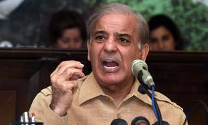 PM Imran, Buzdar responsible for sugar scandal, says Shehbaz Sharif