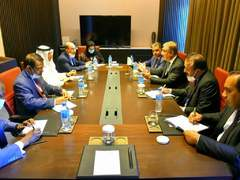 FM Qureshi meets OIC Secretary General in Niamey
