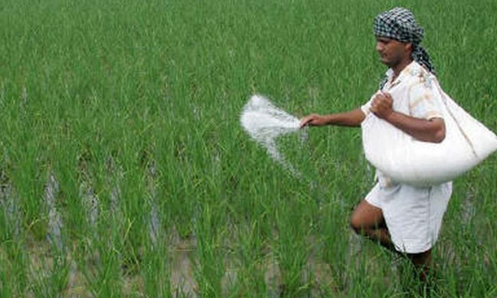 Urea-making plants: Ministries on warpath over RLNG supply
