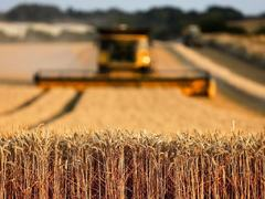 Agri-GDP: celebrating mediocrity?
