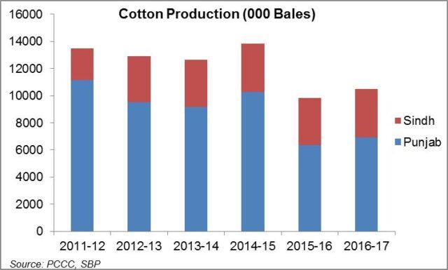 Punjab's lost cotton