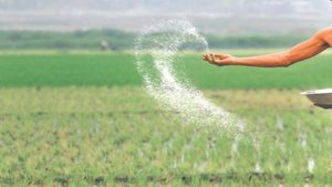 Urea off-take slows in June