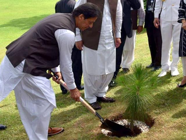 PM Khan kick-starts 'Plant for Pakistan' drive in Punjab