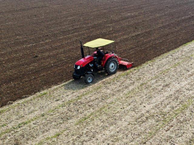 Nutrient Application: beyond the golden ratio