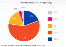 Pakistani youth power growth in freelance economy: report