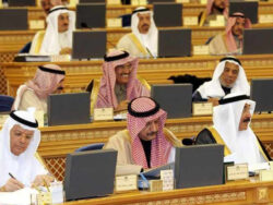 Saudi Shoura approves investment in Pakistan's renewable energy sector