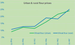 Is the rural inflation over-reported?