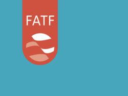 FATF: shades of grey