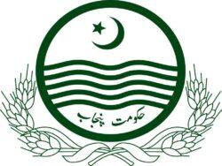 Is Punjab reintroducing 'patwari system'? Govt clarifies