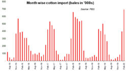Rooting for more cotton import?