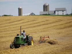 Leaving agriculture behind