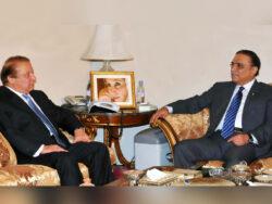 NAB files fresh reference against Nawaz, Zardari