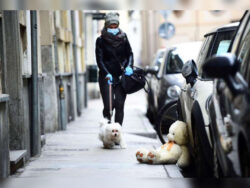 First dog infected with coronavirus dies in Hong Kong